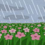 サロマ湖ウルトラマラソンでの寒さ対策、雨対策【レース中のトイレ問題】